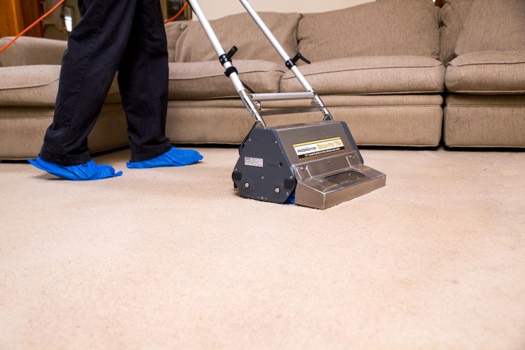 Hasil gambar untuk how to get mold out of carpet
