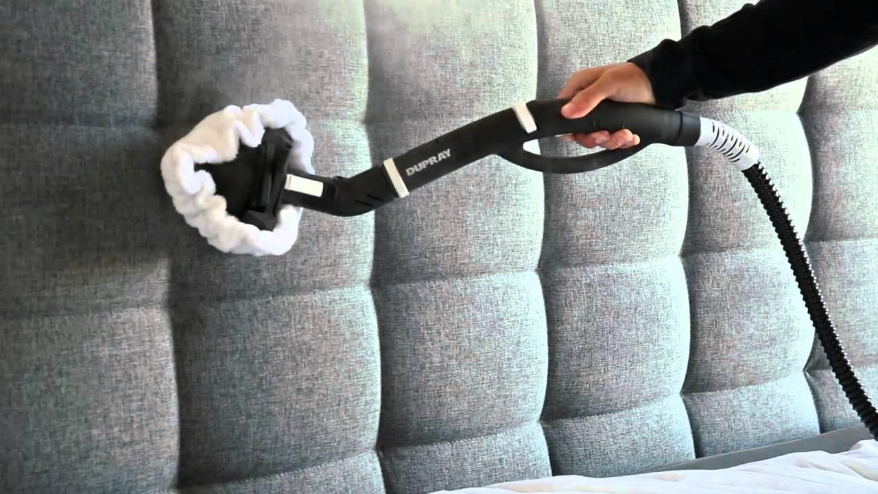 Hasil gambar untuk steam cleaning bed bugs